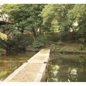 小石川後楽園に行ってきました ♪ パート1 ♪