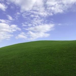 Windows XPの壁紙そっくりな草原が都内で発見される