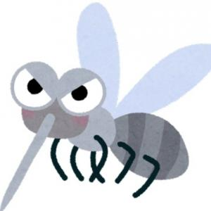 蚊にさされたら冷やす? 温める? どっちが効果的なのか専門家に聞いてみた<br />