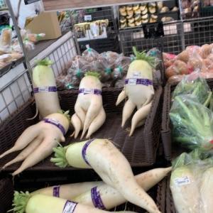 「店員さん、狙ってやったな」 スーパーの野菜売り場に並ぶ大根たちが…<br />