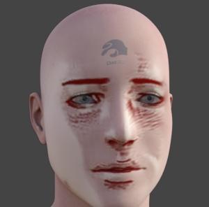 Face Transfer 顔画像からフィギュア生成機能 DAZ Studio 4.12