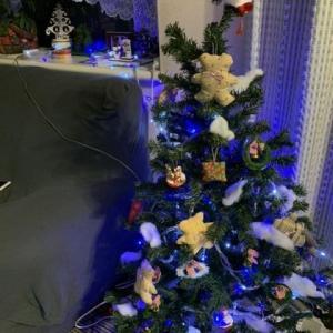 クリスマスツリー&アンドイットさん♪