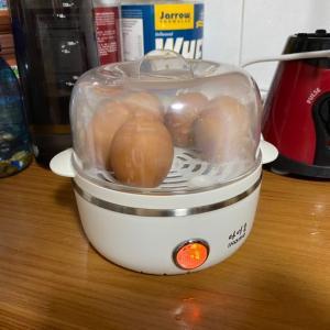 毎日食べる茹で卵を作るためのエッグスチーマーを購入