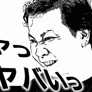 【ウメブログ13】横須賀と野田のフィリピンパブでパロパロがバレる!?