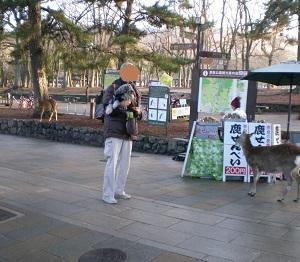 2020年初旅は奈良(その3-東大寺)