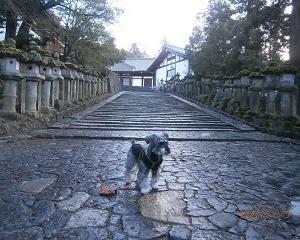 2020年初旅は奈良(その4-二月堂)