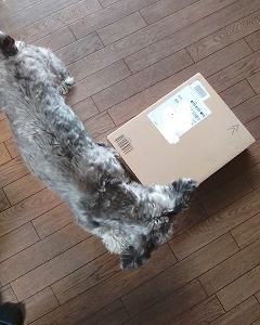 またまたアマゾンからの荷物が届いた