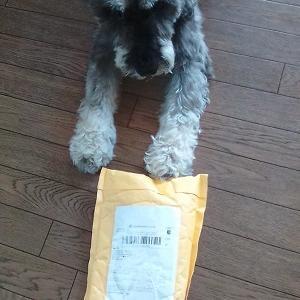 中国から小包が届いた