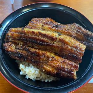 鰻を丸一匹。肉厚で脂の乗った「うなぎ丼」兵庫県武庫之荘の「多゛伊悟」