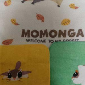 頂き物とモモンガと・・・