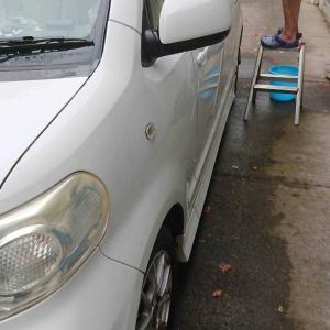 洗車とモモンガ