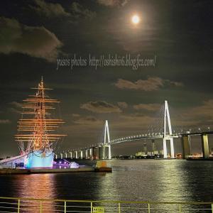 新港夜色 続・望の月前