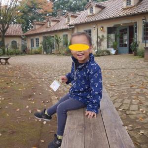 東京から1時間!こもれび森のイバライドは幼児から大人までめちゃくちゃ楽しめる!!子連れ(2歳、5歳)で行ってきたよ①