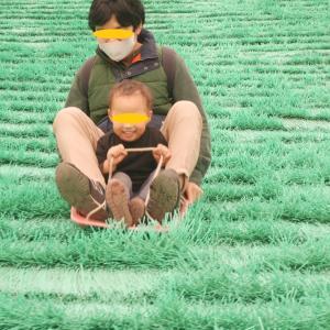 東京から1時間!こもれびの森のイバライドは幼児から大人までめちゃくちゃ楽しめる!子連れ(2歳、5歳)で行ってきたよ② 芝滑り最高!!