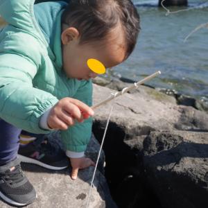小さい子供でもできる!葛西臨海公園でのカニ釣り 季節問わず遊べます♡