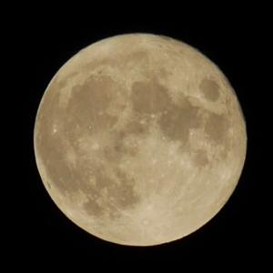 中秋の名月を手持ちのカメラで撮影してみました (LUMIX GX7)