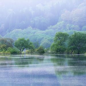 白川ダム湖岸公園 4