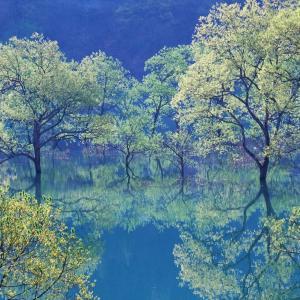 白川ダム湖岸公園 5