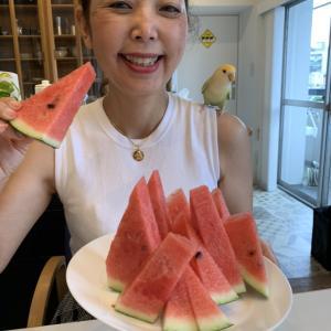 スイカ玉は、Happyを撒き散らしながら山口→東京→埼玉の群馬文化圏へ