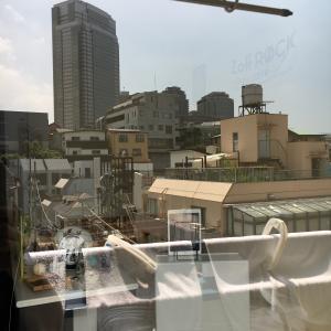 窓を拭いて見通しを立てる!風水視点と夏の思い出。