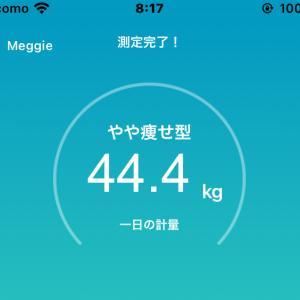 44.4kg!ー7kgを達成したコツは・・・