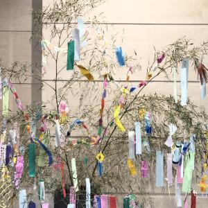 【七夕の願いごと】5色の色に意味がある!願いごとにあった色に書くと願いが叶いやすい!