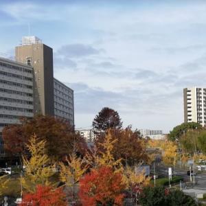 吹田市男女共同参画センター主催 講師として登壇してきました!