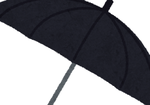 猫と暴風雨と黒い傘
