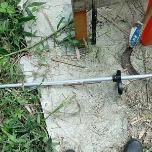 樹脂刃の充電式草刈り機を買ってみた