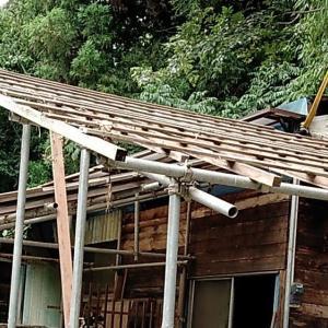 竹藪掘っ立てハウスの屋根解体中