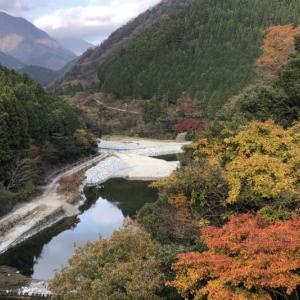 丹沢湖の先に更なる紅葉スポットがあることを知り行ってみた