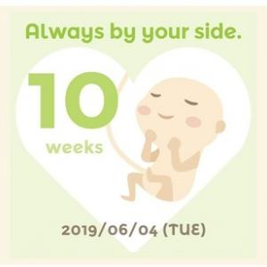 10週目の妊娠初期症状
