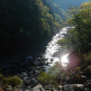 宮川上流大和谷アメゴ釣り 2回目