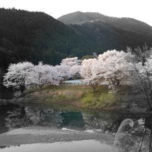 大熊谷テンカラ釣り