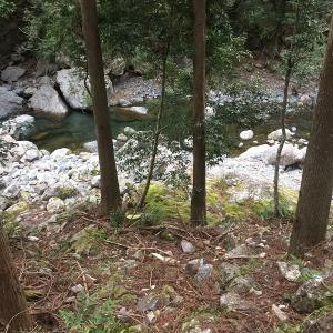 渓流釣り4回目 大熊谷