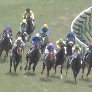 地方馬の躍進も目立つコスモス賞!仕上がり勝負のレースです。