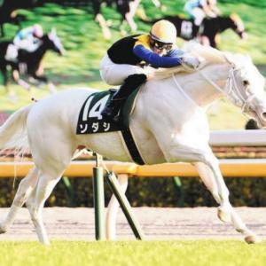 2歳牝馬チャンピオン決定戦 阪神ジュベナイルフィリーズ