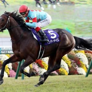 高松宮記念へ向けての最重要ステップ 阪急杯