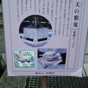 古き都を偲ぶ 「そうだ 京都、歩こう。」19