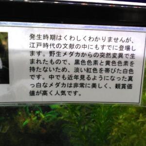 播磨の国宝御朱印巡りバスツアー8