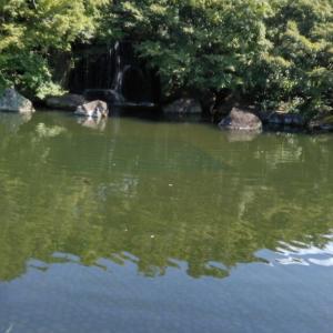 姫路の寺社巡り7