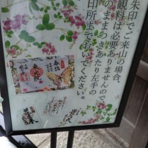 宝塚北サービスエリア&東光院4