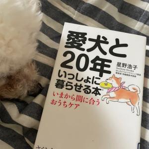 老犬介護の本を読みました