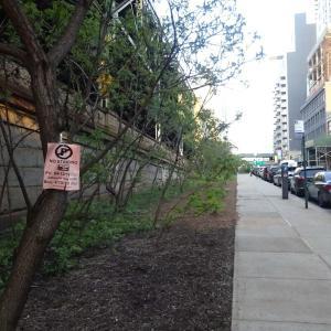 ニューヨーク市内の駐車について、トリップアドバイザーが使っている英語表現をチェックする。