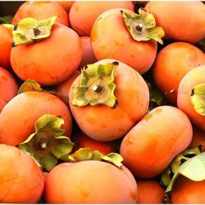 ニューヨーカーは柿を焼く?ホールフーズにはカリフォルニア育ちの柿がある。