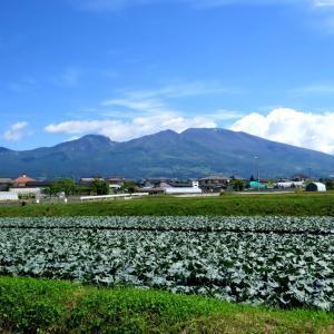 Vol.3774 御影新田から浅間山