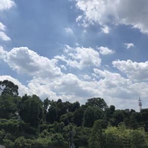 暑ーい!なかのプレビュー vs 仙台