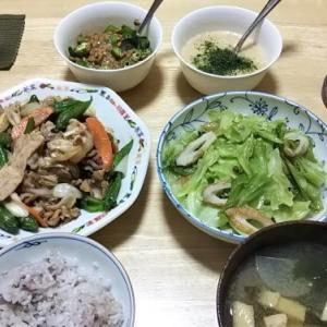 6月25日の献立(キャベツの花椒煮&豚ししとう味噌炒め)