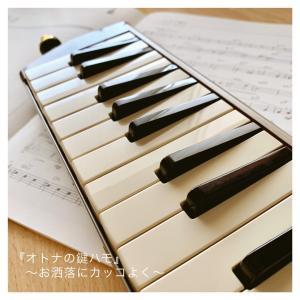 大人の鍵盤ハーモニカ