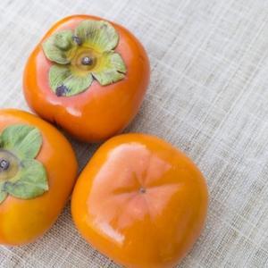 【今日の短歌】柿の実が柿の甘さに辿り着く時間(とき)の豊かさよ日当たりながら (武下奈々子)